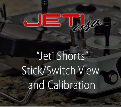 Stick/Switch View and Calibration