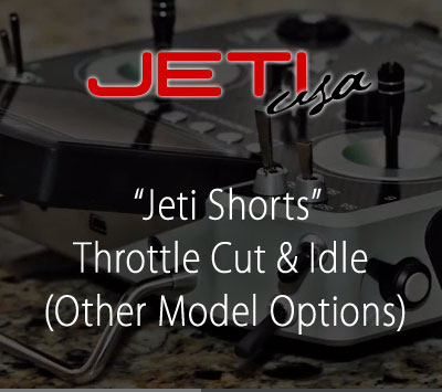 Throttle Cut & Idle (Other Model Options)