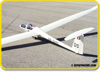 DG-1000 (ARF) Super Scale