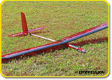 Store Display Pulsar 4E Pro Compact REF Electric Sailplane
