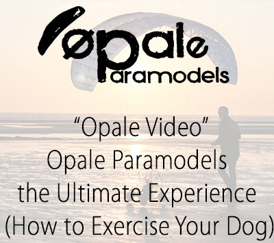 Opale Paramodels the Ultimate Experience (How to Exercise Your Dog)