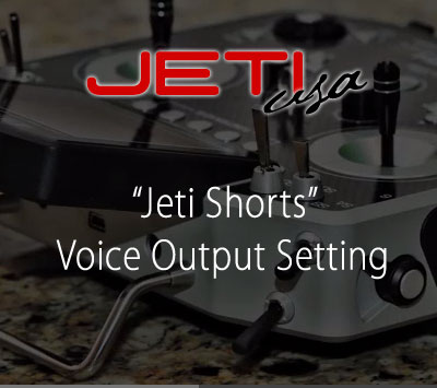 Voice Output Setting